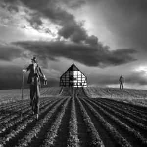 Dariusz Klimzcak: Agro