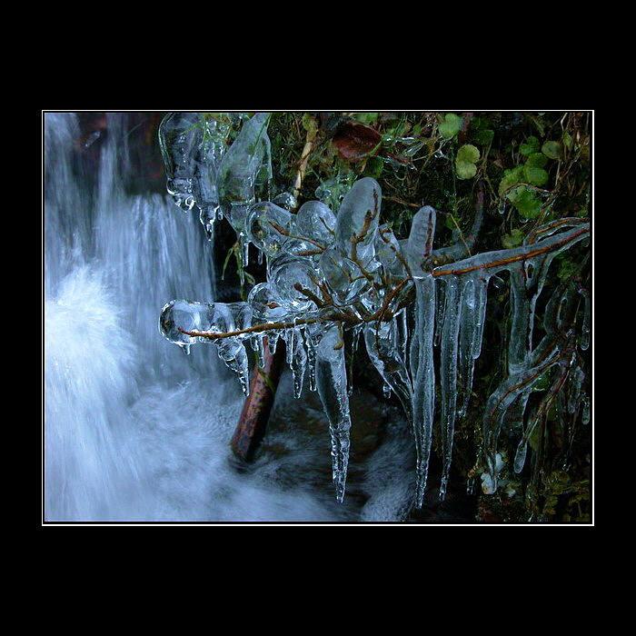 Iceart 4