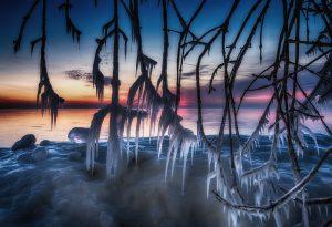 Tim Holte: Sunrise Yesterday